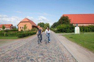 Fahrradfahren_SChloss_Teschow